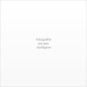 https://www.iperfumy.pl/FotoCache/detail/4/DKNMENM_AEDT.jpg